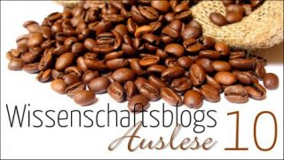 Blogauslese 2010